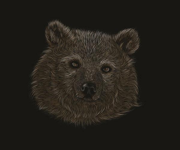 Sketchboard-effect-bear-illustrator-CS5-tutorial