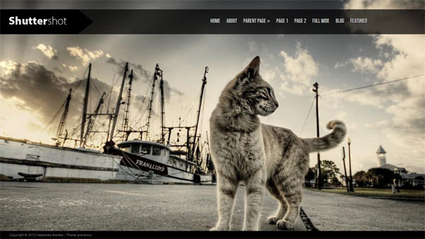 ShutterShot-One-of-the-Best-in-Free-photography-wordpress-themes-2012