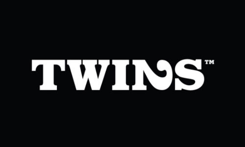 Twins-Cool-Creative-Logo-Logotypes-Example