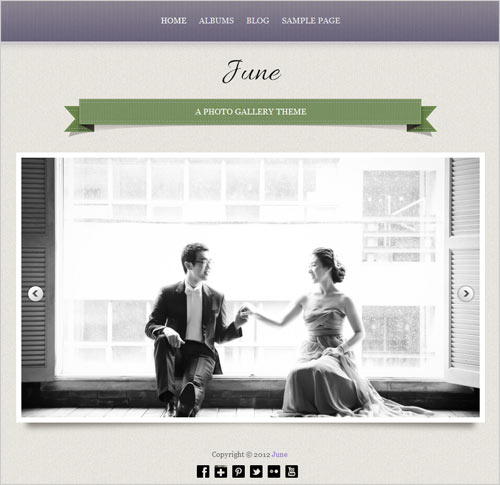 Best-&-Professional-Free-Business-Photography-Wordpress-Theme-of-2012-17