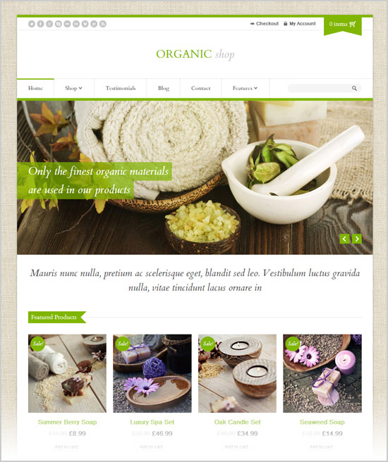 Best-&-Latest-Premium-WordPress-E-Commerce-Themes-of-Oct-2012-10