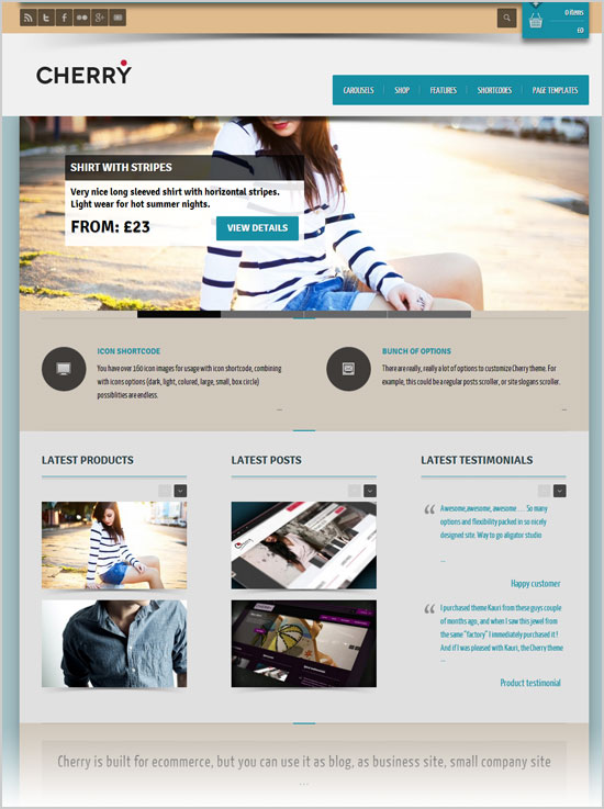 Best-&-Latest-Premium-WordPress-E-Commerce-Themes-of-Oct-2012-12