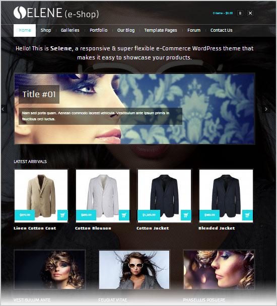 Best-&-Latest-Premium-WordPress-E-Commerce-Themes-of-Oct-2012-15