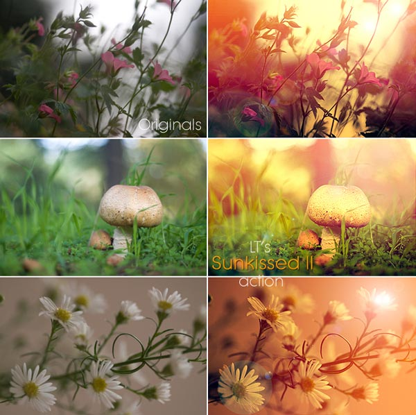 Free Sun kissed Photoshop Actions 30 High Quality Free Photoshop Actions For Amazing Photo Effects