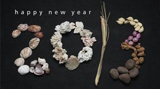 20-New-Year-2013-Wall-&-Desk-Calendar-Designs-For-Inspiration
