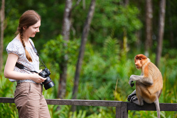 Practice Photography 2 Great Tips For Beginners Who Want Great Wildlife Photographer