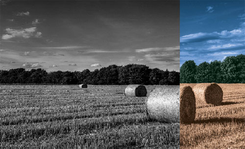 black-and-white-to-colour-photoshop-tutorial-cs6