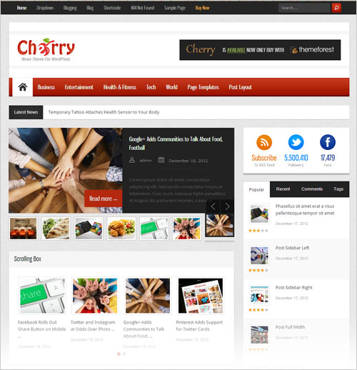 Cherry-Simple-Responsive-News-Magazine-Wordpress-Theme-2013