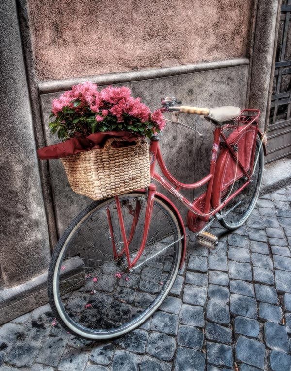 flowers-on-the-bicycle-hdr-photography