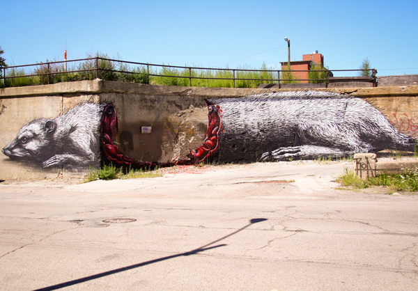 Amazing Graffiti Street Art ROA in Pilsen Chicago USA 2 30+ Awe Inspiring Graffiti Street Art Paintings From Around The World