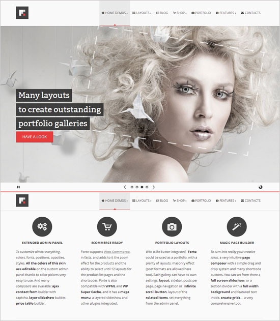 Forte-Newest-multipurpose-WP-eCommerce-theme-of-2013