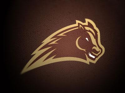 Mustang-Sports-logo-design
