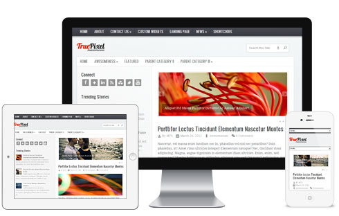 truepixel-elegant-premium-magazine-wordpress-theme-2013