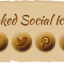 baked-social-media-icons-set