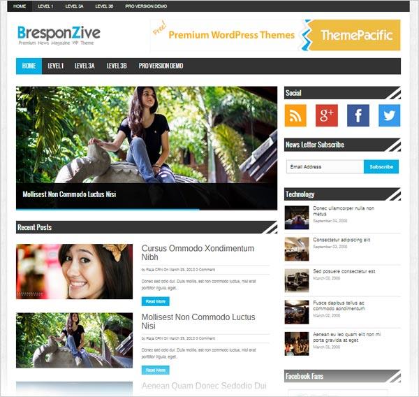 Bresponzive-Free-responsive-wordpress-theme-2013