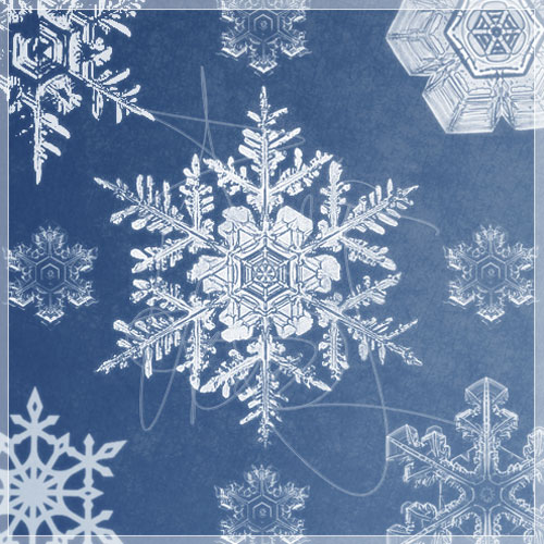 Free-Photoshop_snowflake_brushes
