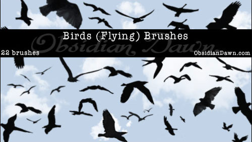 Free_Birds_Flying_Photoshop_Brushes