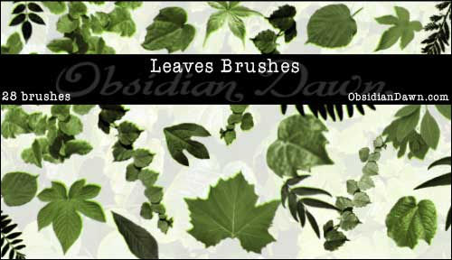 Leaves_Photoshop_Brushes_Free_Download