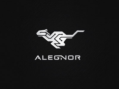 alegnor-business-management-software-system-logo-design