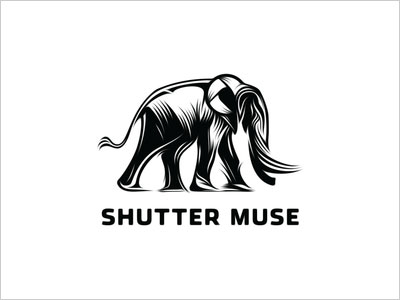 shuttermuse-logo-design