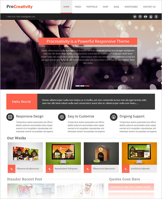 Pro-Creativity-Professional-Business-Wordpress-Theme-2013