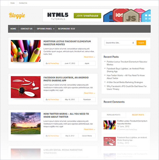 Bloggie-Premium-Free-Wordpress-Theme-oct-sep-2013