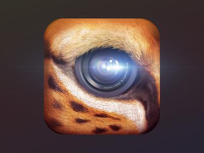 Primal-App-to-edit-&-Share-Photos
