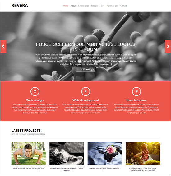 Revera-free-business-wordpress-theme-2013