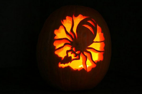 Spider-Halloween-Pumpkin-Carving-Inspiration