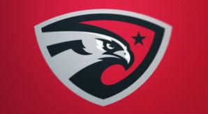 20+-Eagle-Logo-Design-Inspiration