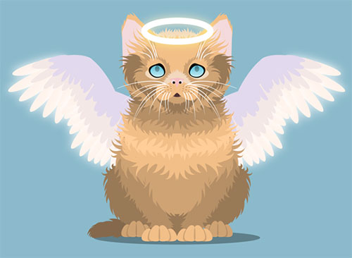 Fluffy-Kitten-illustrator-cs6-tutorial