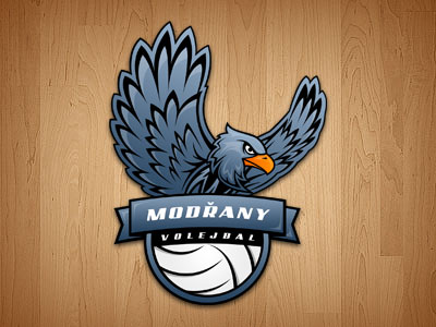 Volleyball-team-logo