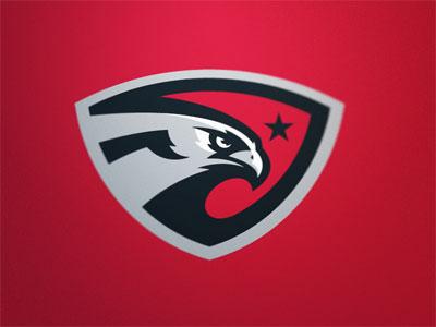20 Eagle Logo Design Inspiration