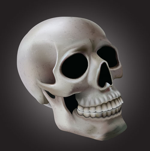 skull_with-mesh-tool-illustrator-tutorial
