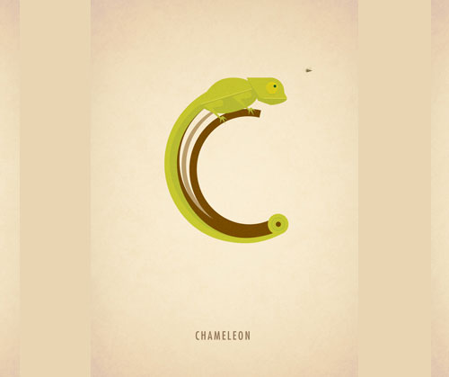 Amazing Animal Typography Letter c Amazing Animal Typography in Alphabets by Marcus Reed