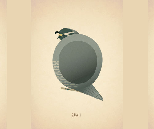 Amazing-Animal-Typography-Letter-q