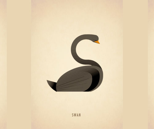 Amazing Animal Typography Letter s Amazing Animal Typography in Alphabets by Marcus Reed