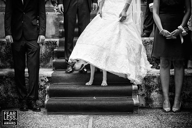 Amazing-Collection-of-Award-Winning-Wedding-Photography--(7)