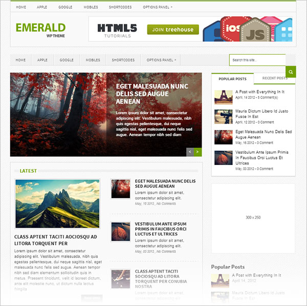 Emerald-Best-premium-responsive-wordpress-theme
