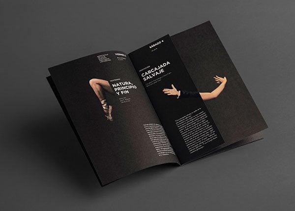 FTMDSJ-Musice-Festival-Brochure-Design-2