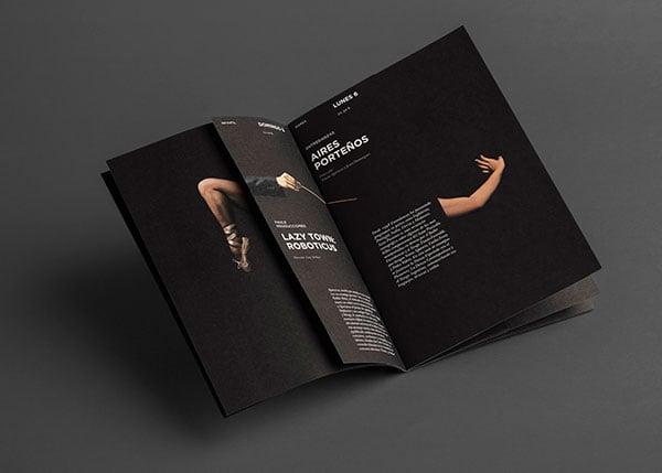 FTMDSJ-Musice-Festival-Brochure-Design-3