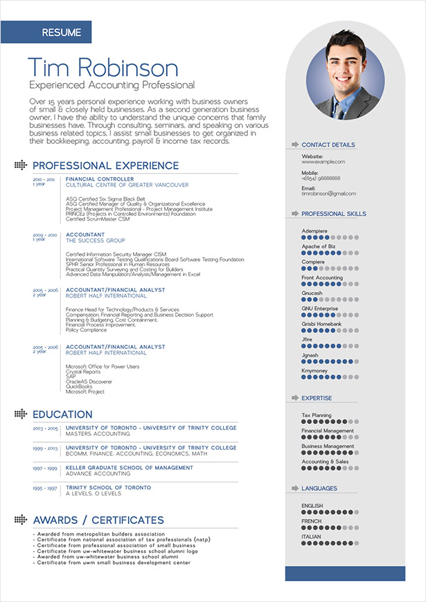 Free simple professional resume template in ai format for Free professional resume format