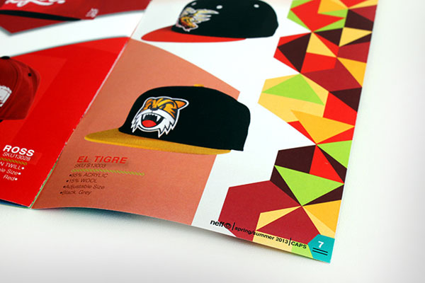 NEFF-beautiful-colorful-brochure-design-ideas-4