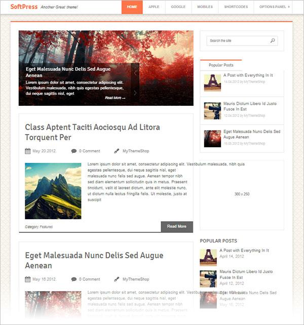 SoftPress-magazine-wordpress-theme