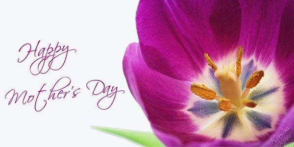 2014 Happy mothers day flowers اجمل واجمد بوستات عيد الام 2015 2016
