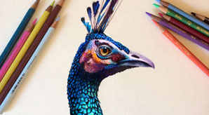Amazing-Colored-Pencil-Drawings-by-Morgan-Davidson