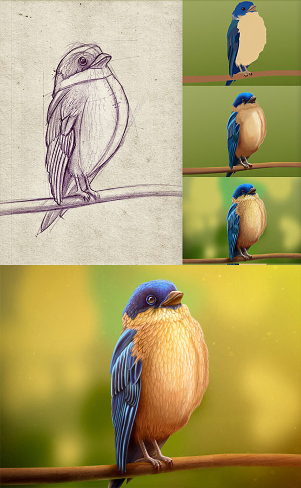 Bird-character-sketching