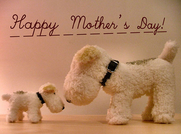 Happy Mother's Day 2014 Pictures, HD Wallpapers, Quotes ...