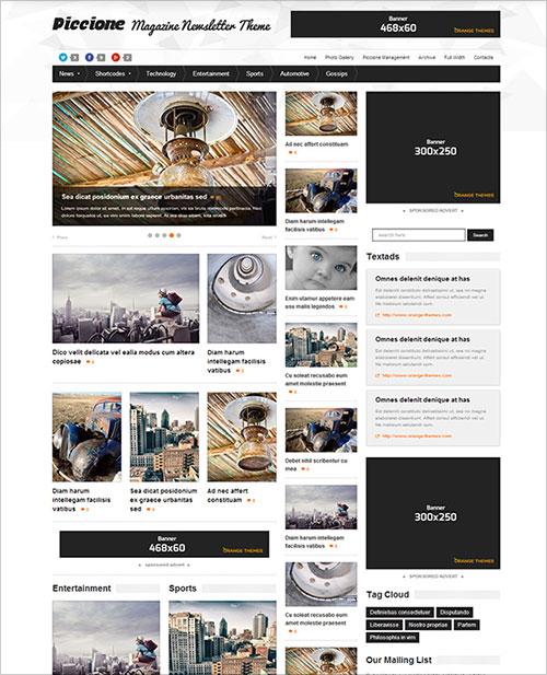 Piccione-responsive-blog-magazine-theme