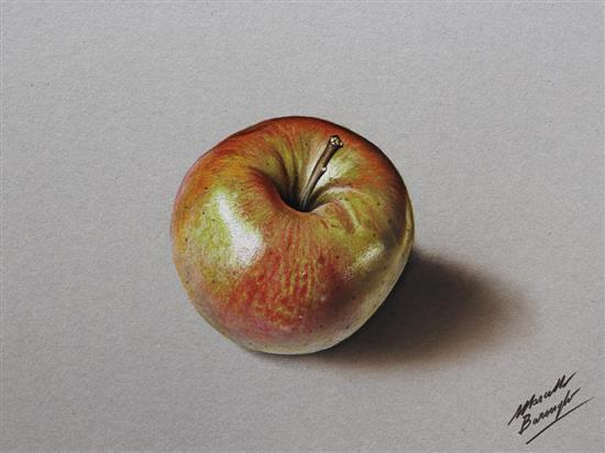 Realistic-Colored-Pencil-Drawings-by-Marcello-Barenghi (11)